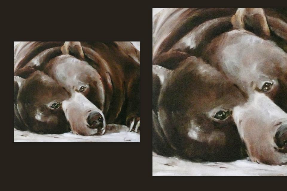 Reprographie Virginie Assandri, peinture d'ours brun.